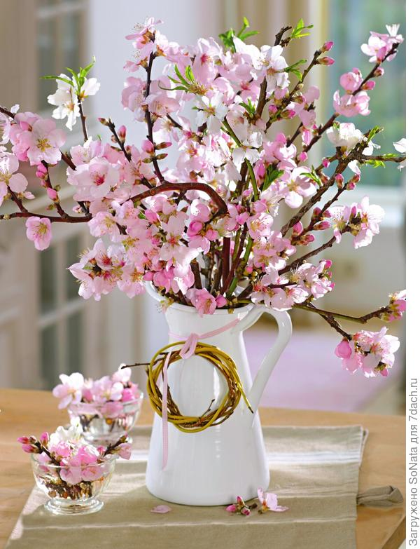 Принесите в дом пару веток, и скоро вы будете любоваться первыми весенними цветами