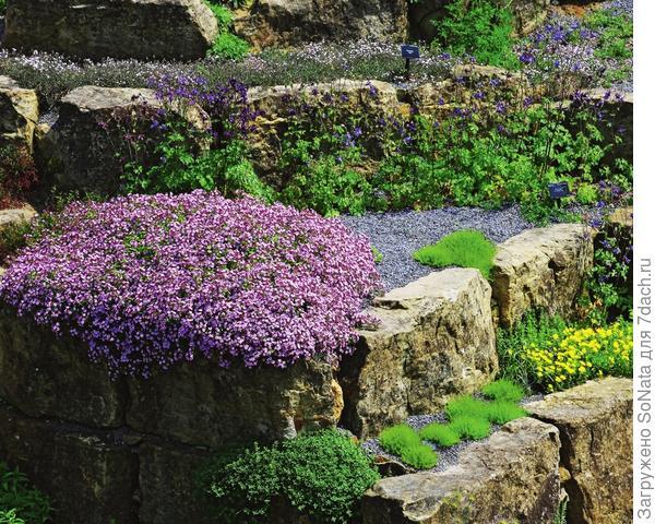 Почвопокровные растения словно «укутывают» каменные объекты разноцветным лоскутным одеялом.