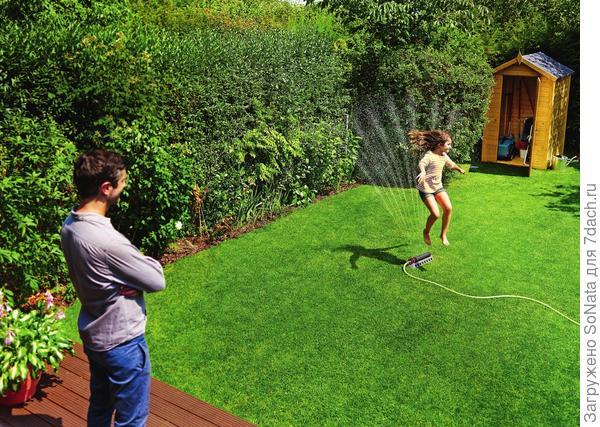 Подкармливать зеленую лужайку нужно со знанием дела, ориентируясь на погоду и сезонность.