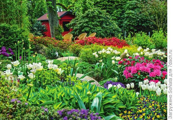 Хлопотунья весна торопливо перелистала садовый календарь и с радостью передала зеленую эстафету томному и знойному лету.
