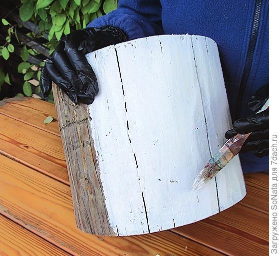 Покройте пни акриловым грунтом, высушите.