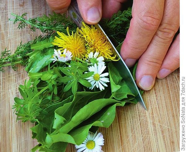 Промойте и просушите травы, мелко нарежьте.