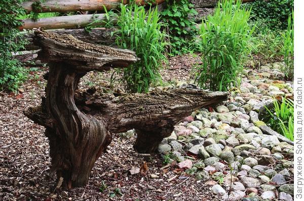 Не скамейка, не игрушка, а неведома зверушка получилась из фрагмента древесного ствола