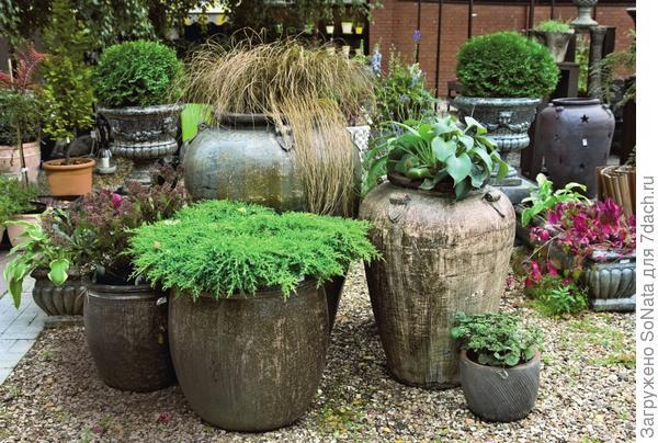 Красивый и оригинальный сад можно создать и без утомительных земляных работ, на которые уходит немало времени и сил.