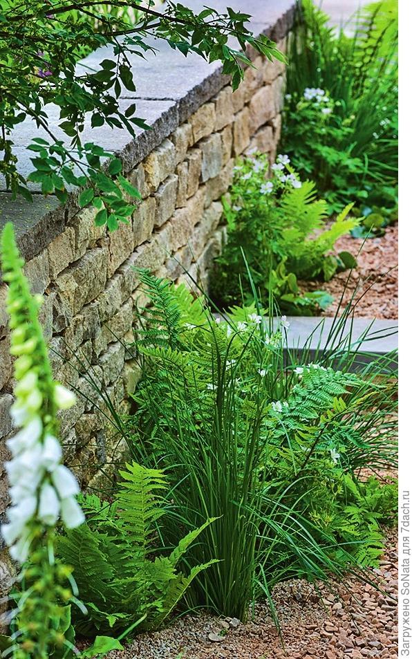 Зеленые растения гармонично соседствуют с каменными элементами.
