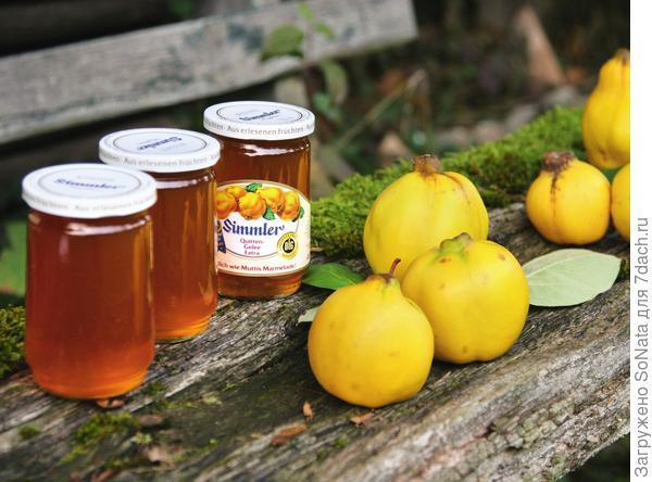 Осенью из золотистых фруктов варят варенье, а бережно изготовленный путем холодного отжима сок перерабатывают в желе или замораживают для дальнейшего консервирования.
