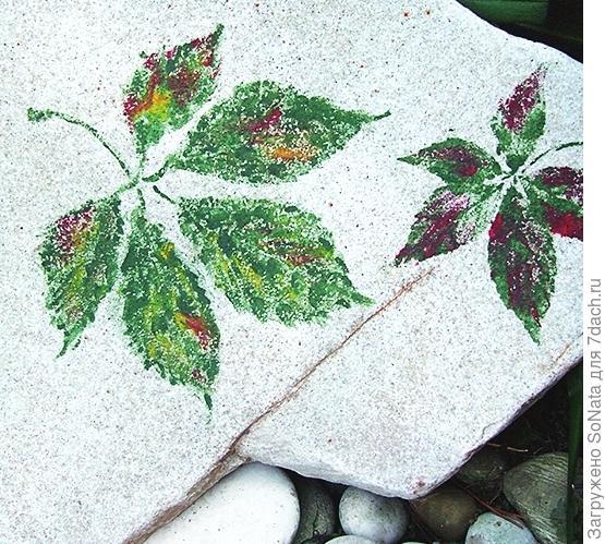 Снимите полиэтилен и листья. У вас получились цветные отпечатки листьев на камне.