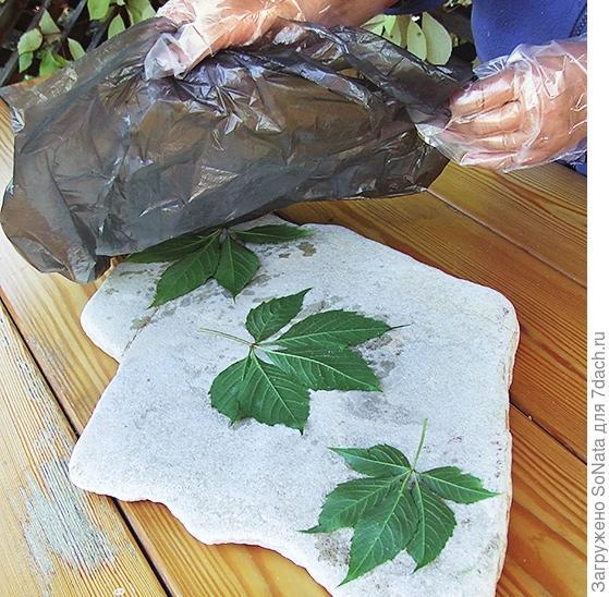В соответствии с задуманной композицией разложите листья на камне чистой стороной вверх, а окрашенной поверхностью - к камню.