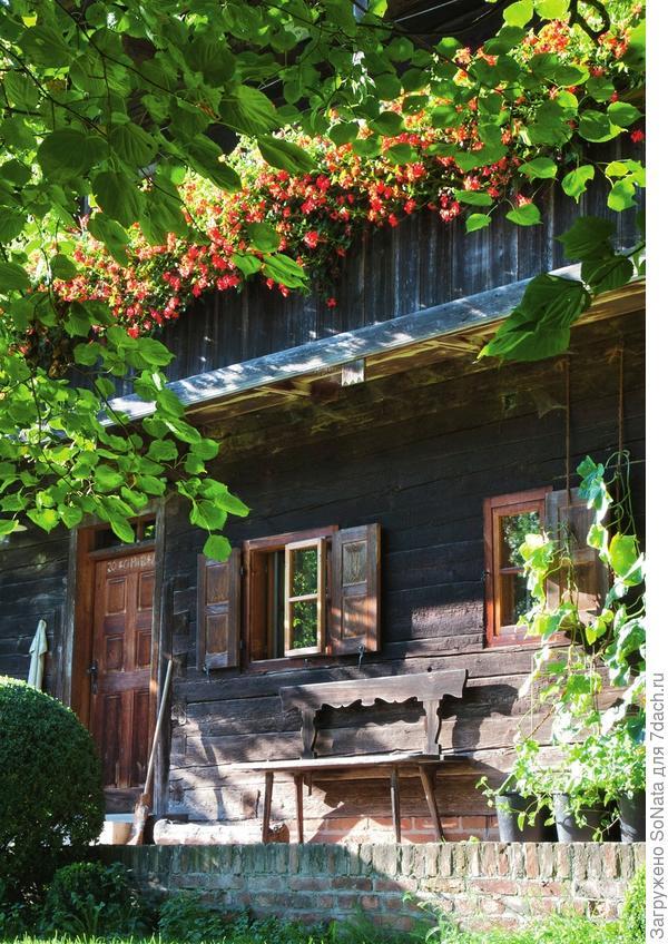 На балюстраде старинного деревянного дома до осени цветут сотни красных гераней.