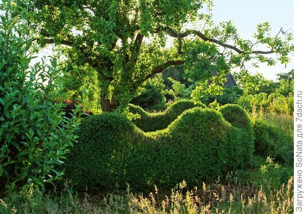 Придайте стене волнообразную форму - так живая изгородь будет смотреться динамичнее.