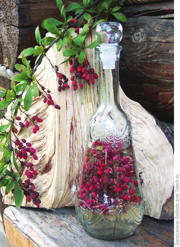 Настаивать лосьон можно в красивой бутылке, а вот готовый продукт лучше хранить в емкости из темного стекла.
