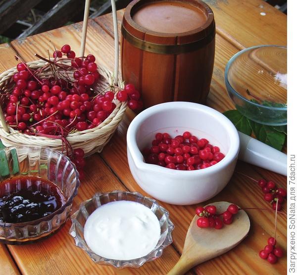 Возьмите столовую ложку ягод калины и чайную ложку ягод лимонника.
