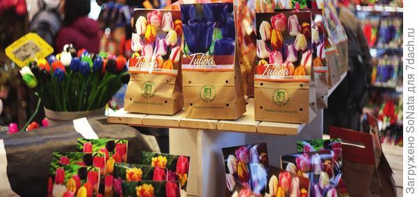 Яркие упаковки неизменно радуют глаз, но постарайтесь выбрать растения, которые украсят, а не захламят ваш участок.