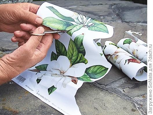 Вырезаем из декупажной карты изображения крупных цветов с листьями
