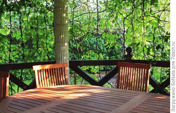 Круглый стол, спрятанный под крышей беседки, и удобные стулья - отличное решение для обеденной зоны.