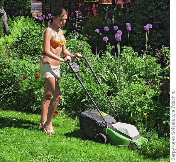 Регулярное скашивание глушит сорняки, но главное, что без лишнего труда вы приведете сад в порядок