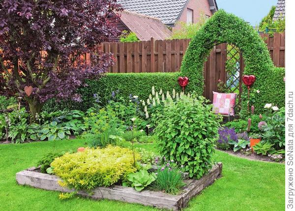 Островок с цветочными растениями в центре газона разбивает ровную плоскость, перекрывая обзор сада.