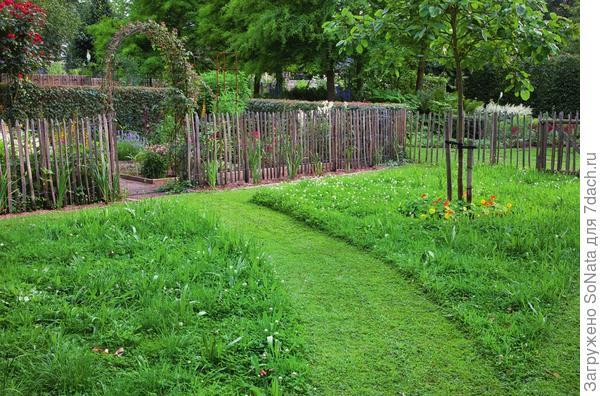 Самый легкий вариант - выстричь тропинку среди травы. Но в дождливый день, увы, гулять по ней вам вряд ли захочется.