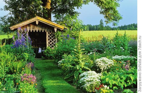 Для травяных дорожек выбирайте травосмесь из сортов, устойчивых к вытаптыванию