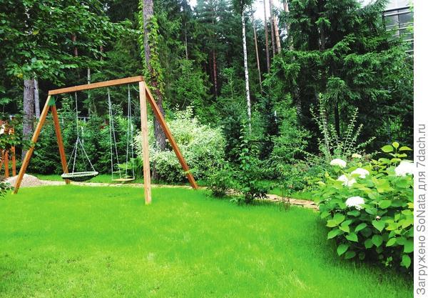 Посевная смесь для спортивного газона состоит из трав, устойчивых к вытаптыванию