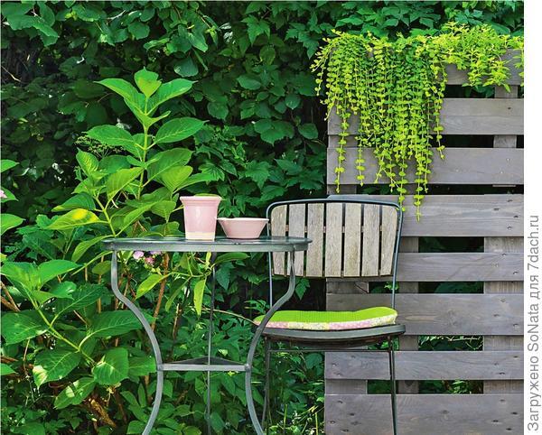 При необходимости прикрепите еще одну паллету или ее половинку и декорируйте перегородку растениями в горшках.