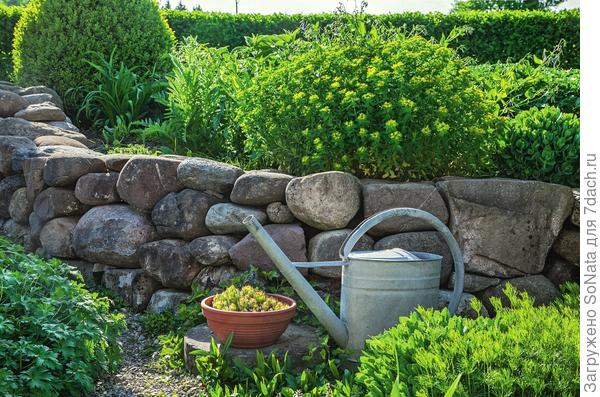 Округлые валуны средних размеров тоже подходят для возведения стенки сухой кладки. В стыки между камнями можно посадить растения.