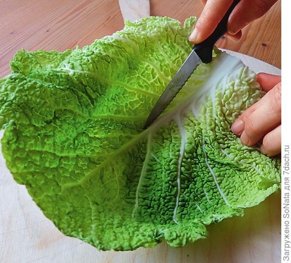 Капустные листья промойте и высушите. Ножом удалите среднюю жилку листа.