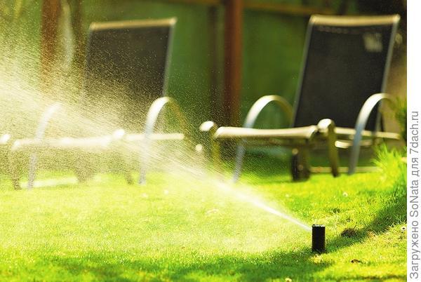 Учтите: засеянный газон нужно регулярно и обильно поливать, а подросшую траву стричь 1-2 раза в неделю, не давая ей подниматься выше 5-7 см.