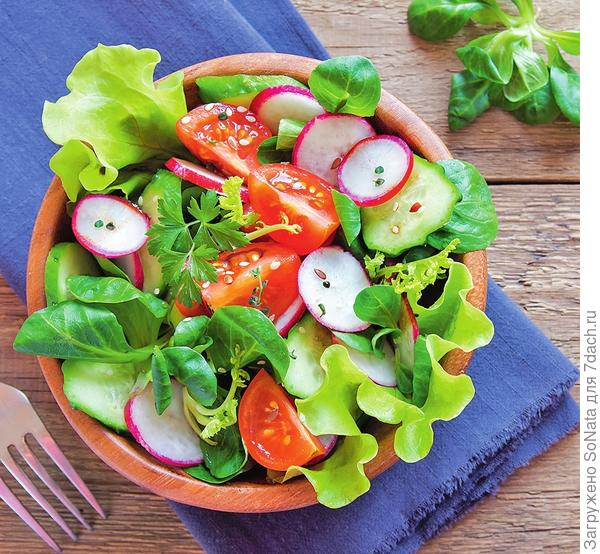 Из молодых побегов и листьев иван-чая можно приготовить вкусный витаминный салат.