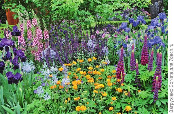 Разноцветье должно быть тщательно продуманным.