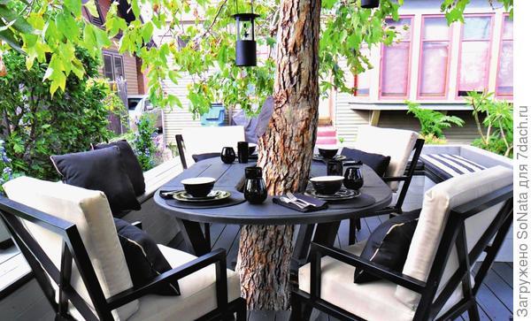 Атмосфера, царящая под сенью дерева, полна романтики и особого чувства близости к природе