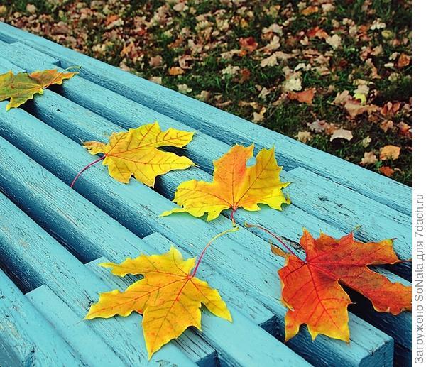 Покрасочные работы следует проводить в нежаркие и сухие дни поскольку свеженанесенные фасадные покрытия очень чувствительны к воздействию прямых солнечных лучей или влаги.