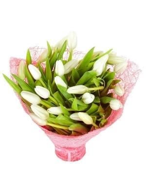 http://flower-market.kiev.ua/image/cache/data/tulpany/17/1571612800-300x400.jpg