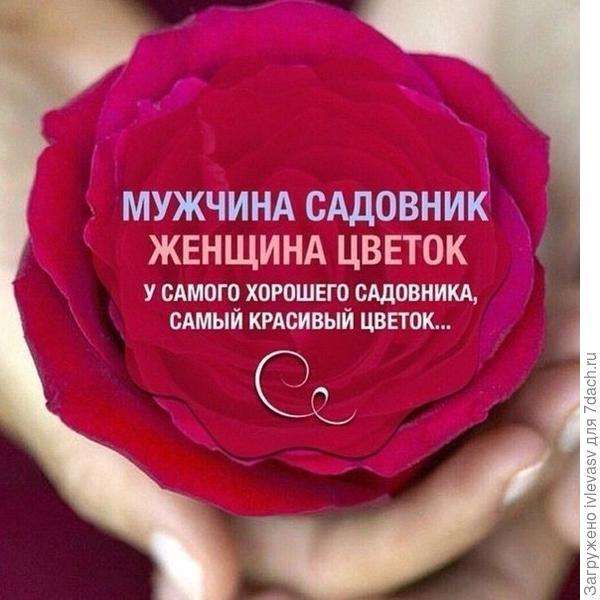 http://cs7007.vk.me/v7007281/1e859/-Nl6cdt3njM.jpg