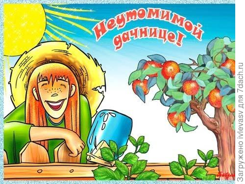 http://4put.ru/pictures/max/626/1923779.jpg