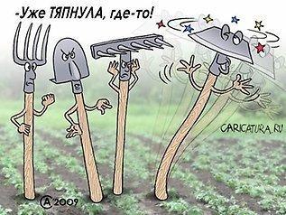 http://static.baza.farpost.ru/v/1424779755877_hugeBlock