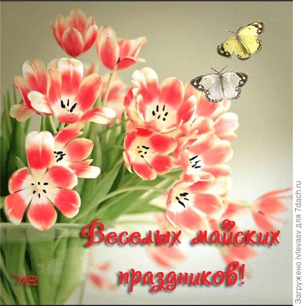 http://i.alshop-ua.ru/u/36/66101eebe011e4b803b4e1d720dd11/-/f188bf512cf9.jpg