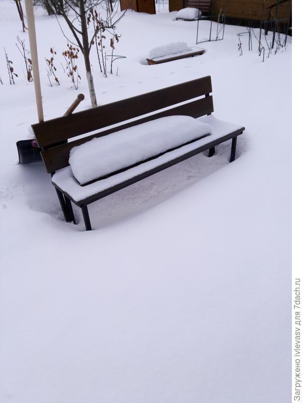 Снежное безмолвие.