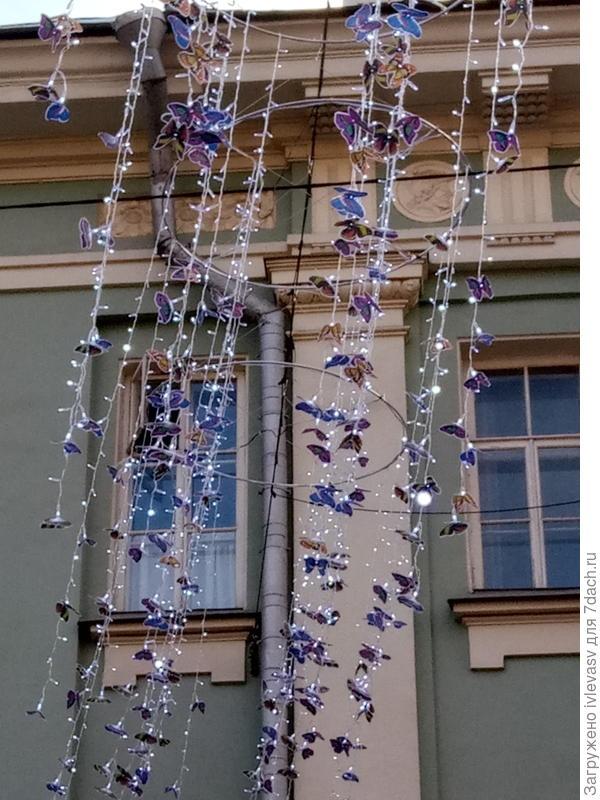 В Москве только вот такие бабочки летают. Это днем.