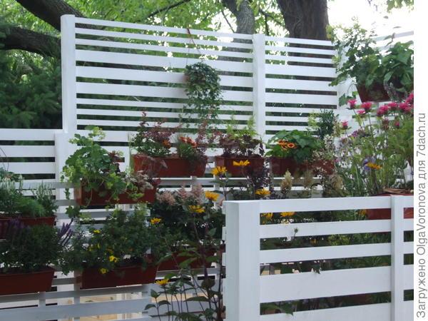 Идея садовой перегородки