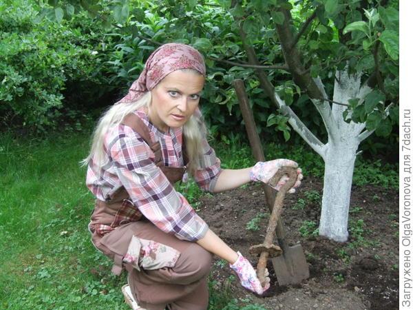 Ничего не расти может тогда, когда в почве под корнями находится крупный металлический предмет