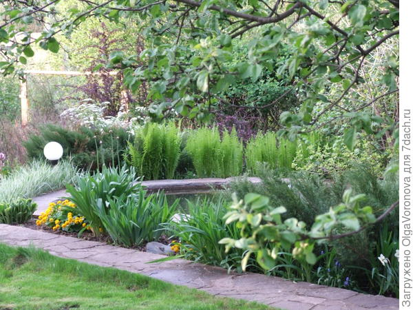 Водоём многое даёт саду