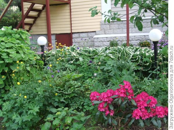 Каждому растению нужна своя почва