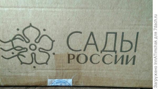 фирменная коробка