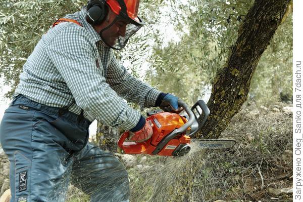 При трудных работах с цепной пилой оператор должен иметь защитную одежду