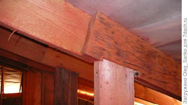 Древесина посинела. Недопустимое качество для несущей конструкции. Фото: В.В. Черномашенцева