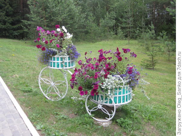 Такие велосипеды разбросаны по всей территории.