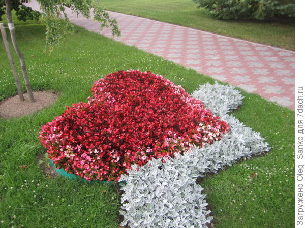 Такая флористическая композиция встречает отдыхающих у входа в санаторий
