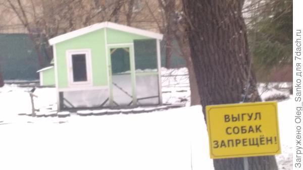 Курятник в центре Москвы