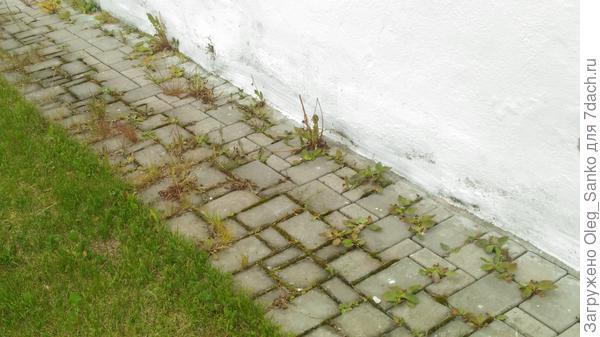 Отсутствует предохранительная от флоры прокладка